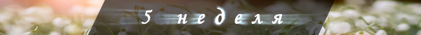 nedele_000004.png